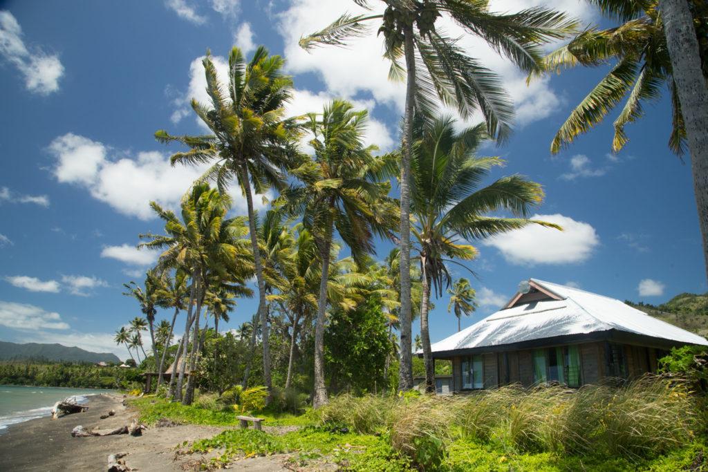 Photo 7 of an activity @ Fiji | Suva